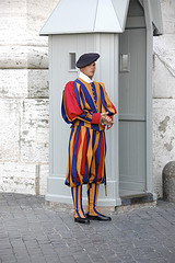 HIPAA and HITECH Guard Privacy like a Swiss Guard